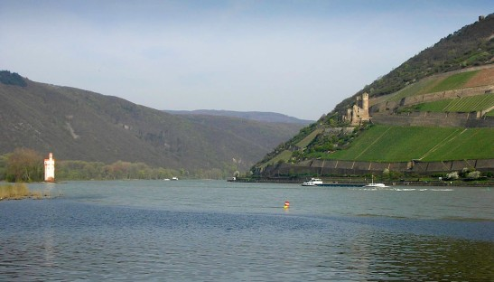 Mausethurm and Burg Ehrenfels from the quay at Bingen, overlooking the junction with the river Nahe. Photograph by David Hill, 21 April 2006, 08.45 From this viewpoint Burg Ehrenfels is seen against the steep vineyards amongst which it stands. The sunbathed slopes of Ehrenfels and brilliantly illuminated Mausethurm are the defining visual characters at the site. Click on image to open full size.