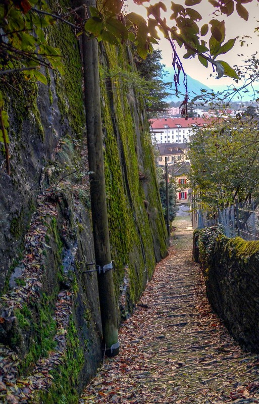 Bellinzona: View down the Salita della Nocca Photograph by David Hill taken 1 November 2012, 15.24 GMT Ruskin developed a fascination with the rock exposure to the left of the Salita. He said that it reminded him of the Gneiss rocks of Glenfinlas and Glen Garry in his native Scotland. It is a little suprising to discover that the rock outcrop appears to have hardly weathered at all since 1858, although the whole site is damper due to the growth of trees overhead. Perhaps I should have cleaned off the autumnal leaves, in order to better see the rock, but the colour effect was altogether too Ruskinian.