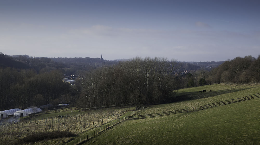St Chad's Headingley from Sugarwell Hill, Meanwood Valley. Photograph by David Hill, taken 10 February 2015, 15.36 Taken on the same line of sight as Grimshaw's watercolour, but from further back. Grimshaw's exact viewpoint can be made out to the left, where Woodhouse Ridge turns away towards Headingley. Click on image to view at full size.