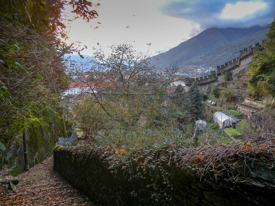 Bellinzona: View from the Salita della Nocca Photograph by David Hill taken 1 November 2012, 15.24 GMT Ruskin seems to have taken advantage of the natural rock seat at the bottom left corner of this image. The building behind the trees in the centre is the present-day youth hostel. To the right are the walls and vineyard terraces of Montebello Castle. The site would have provided Ruskin with a shaded place to work in the heat of his visit in June-July 1858. Click on image to enlarge