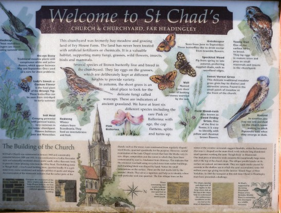 St Chad's History Board Photograph by David Hill, taken 3 February 2015, 12.12. Click on image to view at full size.