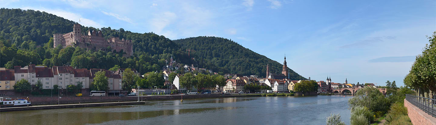 Heidleberg Castle, Town and Bridge from the banks of the Neckar, upstream of the old bridge Photograph by David Hill taken 27 August 2015, 08.30 GMT