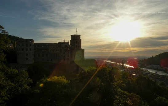 Heidelberg Castle and Town from the Garden Terrace: Sunset Photograph by David Hill, 26 August 2015, 17.22 GMT