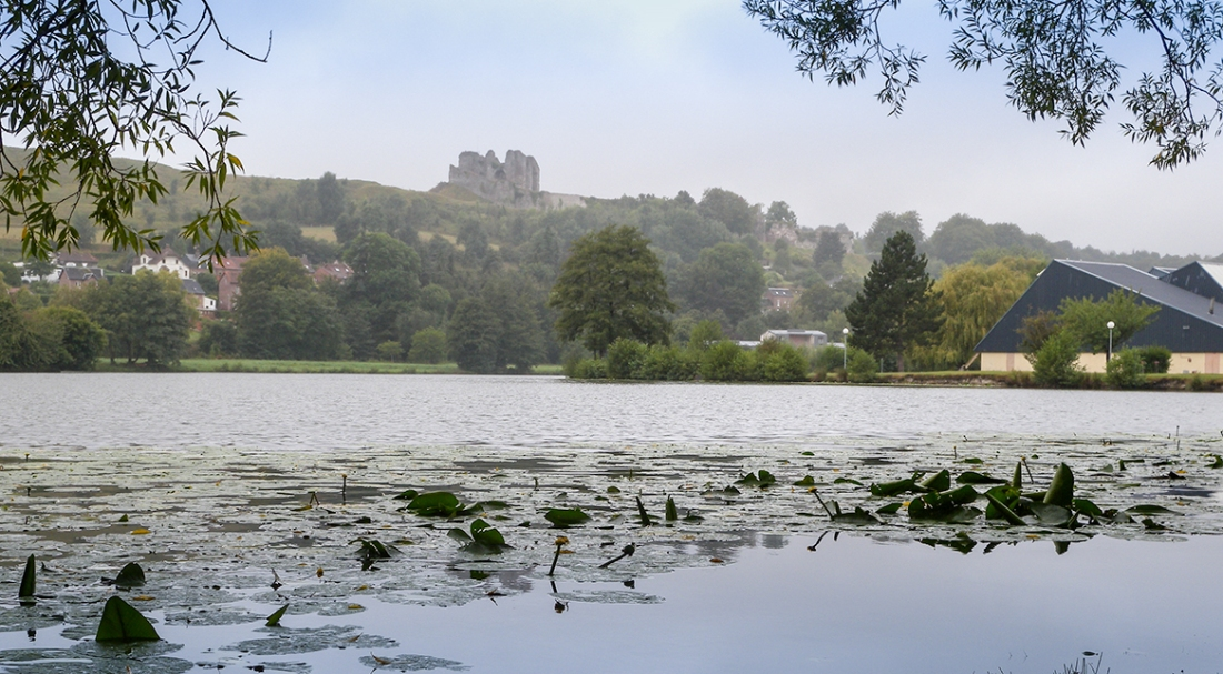 Castle of Arques la Bataille from the East Photograph by David Hill, taken 5 September 2016, 14.08 GMT The exact viewpoint of Cotman's drawings is today a little hemmed in by buildings, but there are open views of the castle over the nearby lake as here.