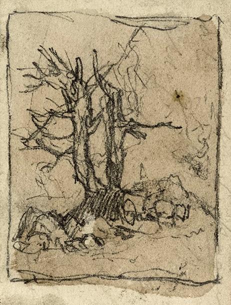 Blasted oak sketch