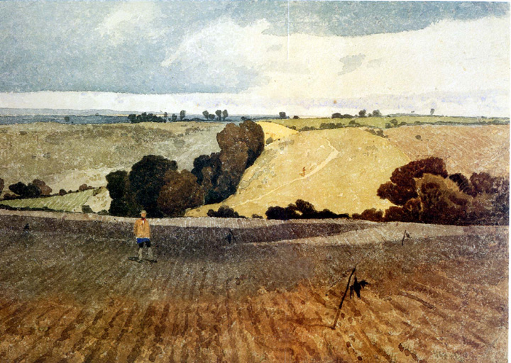 Ploughed Field SS