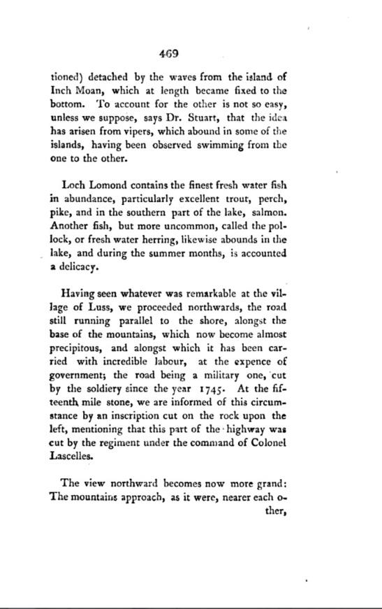Denholm 1804