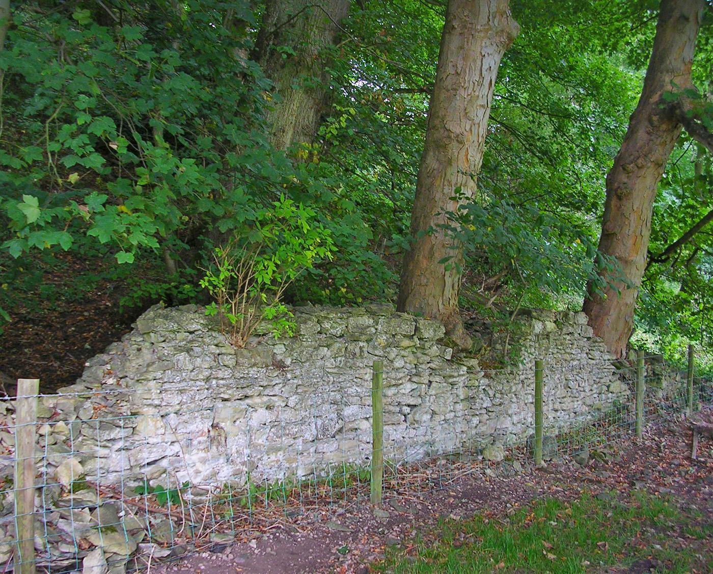 Duncombe Wall 2005