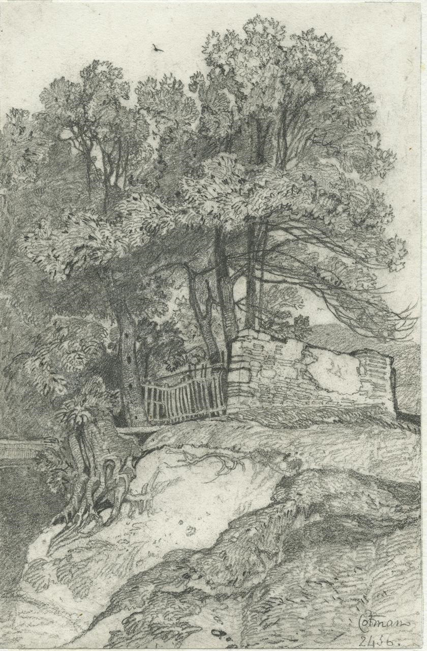 NCM drawing